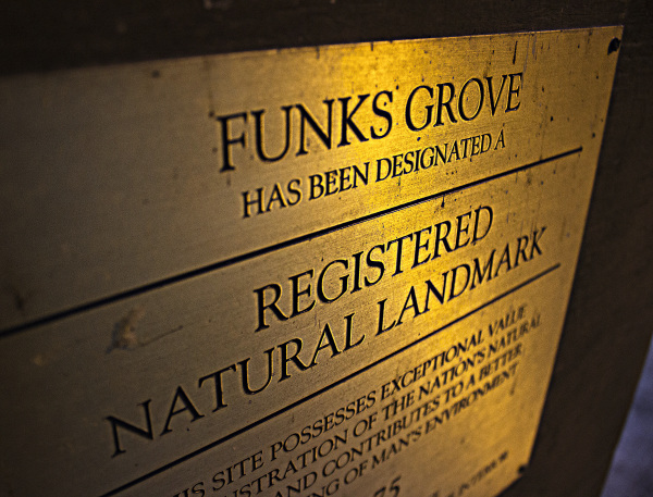 Funks Grove - HDR
